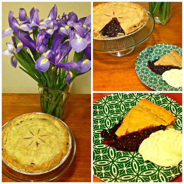 blueberry pie trio