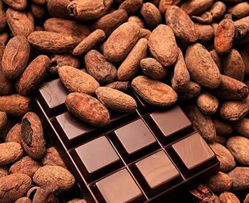cocoa beans & chocolate